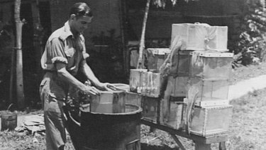 Sterilising mosquito cages in boiling water after mosquitoes had been infected with malaria.