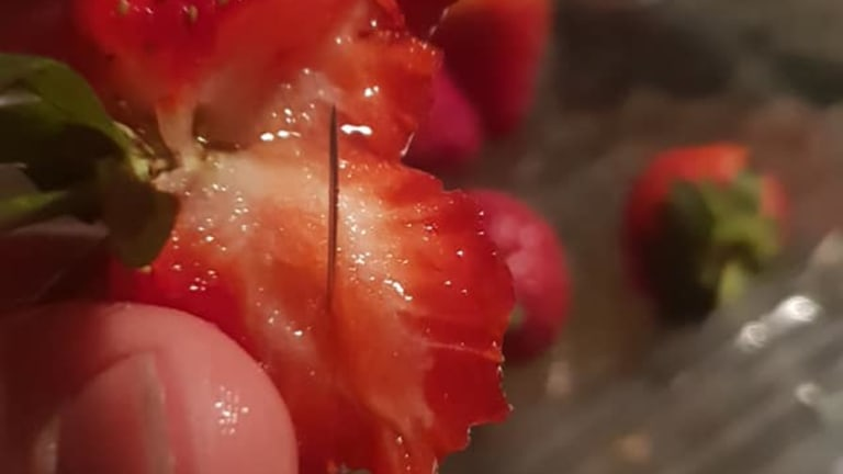 NSW mother Chantal Faugeras, of Wingham, posted these pictures of strawberries with needles in them to Facebook, saying she purchased them at the local Coles.