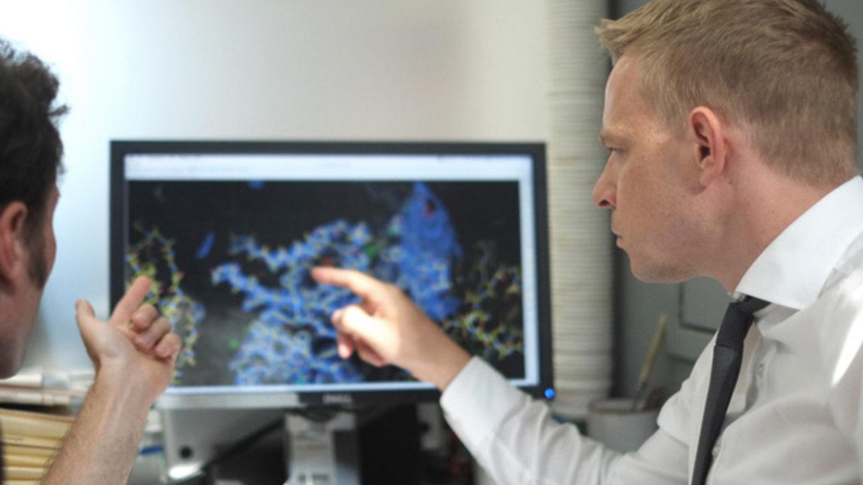 Daniel Christ looks at an antibody design at the Garvan Institute.