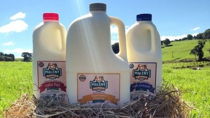 Business calls for Buy Queensland overhaul after milk contract snub