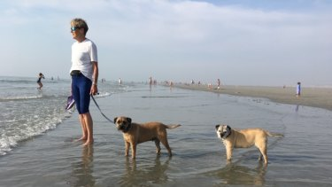 Long wait: Sue Bathgate with her dogs Bertie and Poppy, who are currently in Australia.