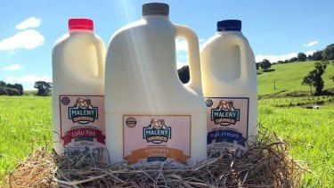 """One reason Maleny Dairies missed out was their """"low fat was not low fat enough"""", according to owner Ross Hopper."""