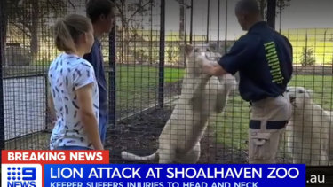 The zoo says that visitors can come face-to-face with its lions and feed them with the help of zoo staff.