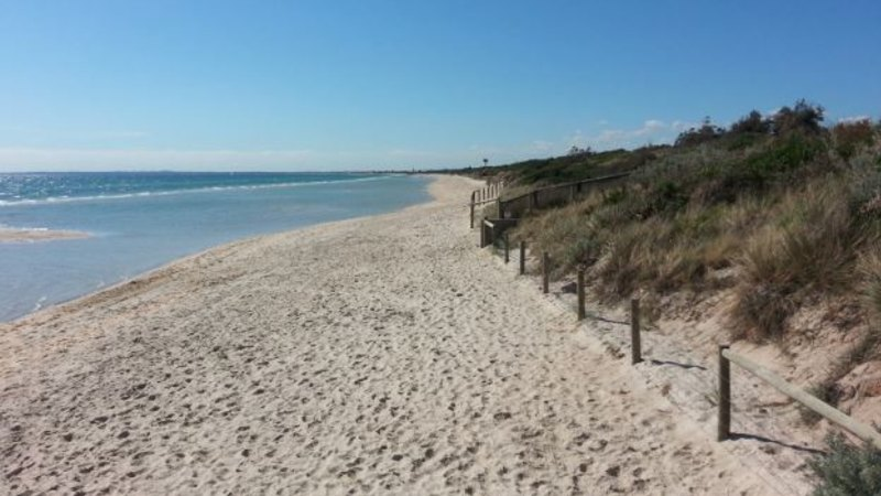Newborn girl found dead on beach still had umbilical cord and placenta – The Age