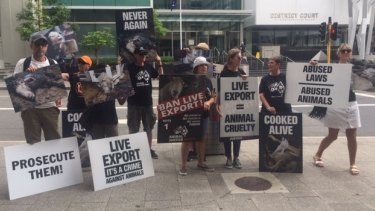 Anti live animal export activists outside Perth Magistrates Court on Friday.
