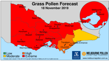 Monday's pollen warning.