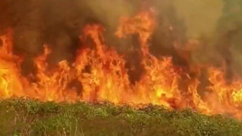 fire warnings victoria - photo #22