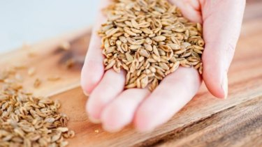 About 35 per cent of our calorie intake should be from whole grain.