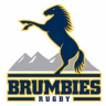 ACT Brumbies set to bank back to back profits for first time in decade