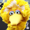 As Big Bird, Spinney entertained generations of children around the world on the television show Sesame Street.