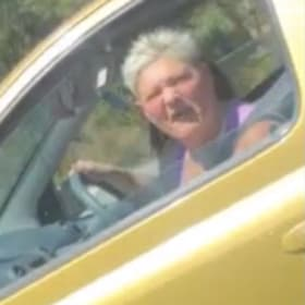 Police hunt two women after brick thrown at moving car on freeway