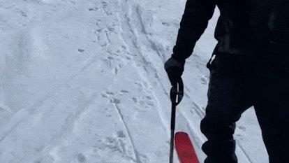 'Splitboarders are a weird bunch': Meet the women venturing beyond snow resorts