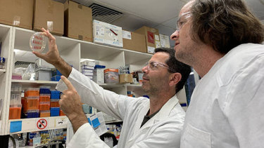 UQ's Professor Mark Schembri (left).