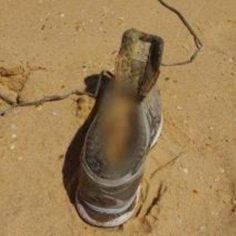 One of Caddick's feet was found inside a shoe on Bournda Beach on the NSW South Coast in February.
