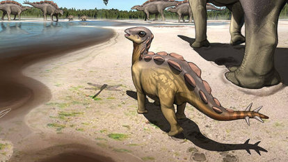 Tiptoe through the Cretaceous: baby dino footprint shows toe-walking