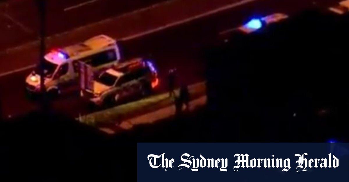 'Violent confrontation': Man shot police officer allegedly stabbed on Sydney's northern beaches – Sydney Morning Herald