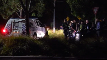 About 30 youths were involved in the brawl at a Narre Warren reserve on Tuesday night.
