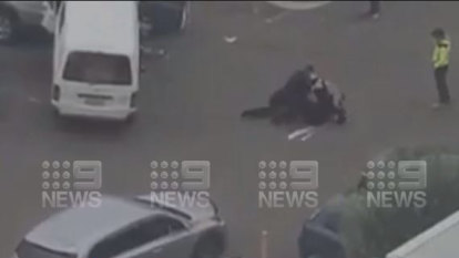 Police draw weapons on driver in dramatic Bankstown arrest