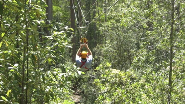 A zip-line through treetops. The zip-line depicted in this photograph is not the scene of the fatal collision in Honduras.