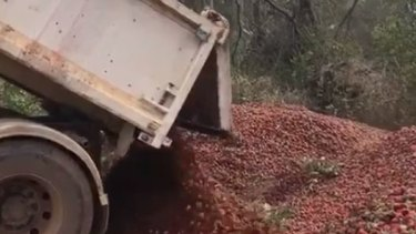 Tonnes of strawberries were dumped by a farm at Donnybrook following the strawberry sabotage.