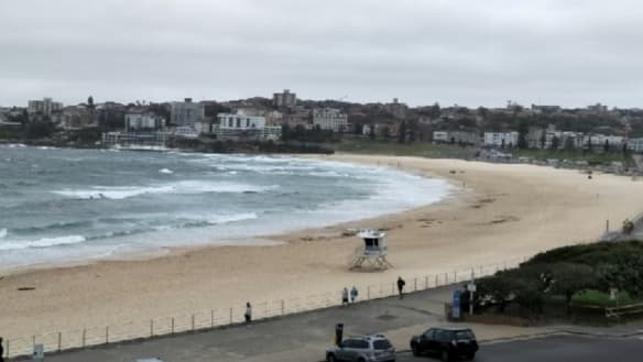 'Not a soul in the water': Bondi Beach closed after shark sighting