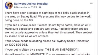 Earlwood Animal Hospital posted a warning on social media after twice spotting red-bellied black snakesin the residential area last week.