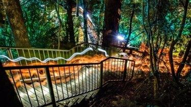 Luminous Botanicus at the Australian National Botanic Gardens for Enlighten.