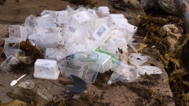 Some of the contents of containers that washed ashore in Sydney this week.