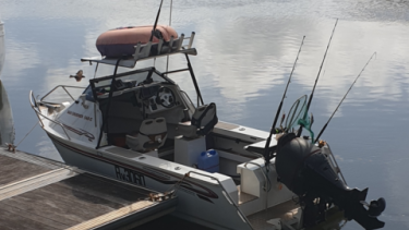 Police are appealing for anyone who may have seen the boat in the Innisfail area as they resume a second day's search for its missing owner.
