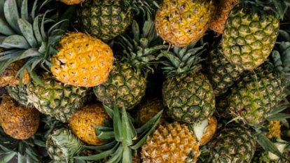 US, Canada hail Taiwan's 'freedom pineapples' after Chinese ban
