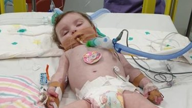 Amiyah Windross died on Wednesday of an undiagnosed neurological condition she had battled since birth.