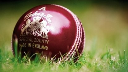 Duking it out: Cricket ball manufacturers in pitch battle