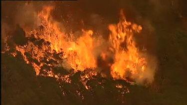 The fires burning near Mallacoota on Tuesday.