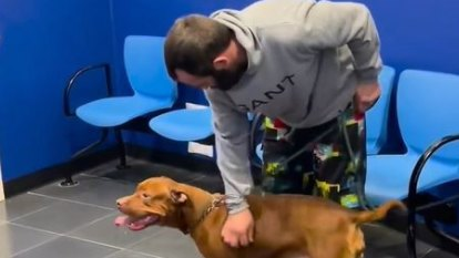 Owner reunited with dog allegedly stolen from outside CBD shop