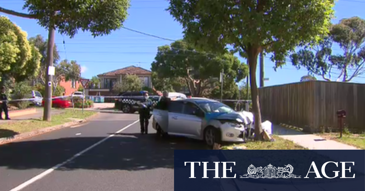 Woman accused of using car to run over pin down police sobs in court after dramatic arrest – The Age