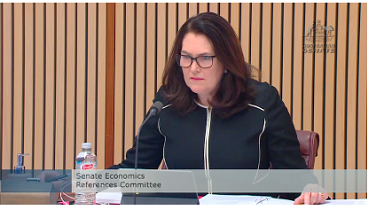 Labor senator Deborah O'Neill questioned EY about overlapping roles at Alinta.