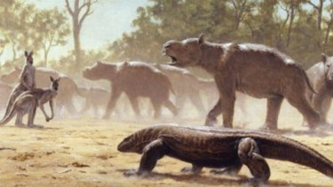 Examples of Diprotodon, the giant lizard Megalania and giant kangaroos have all been found at the site.