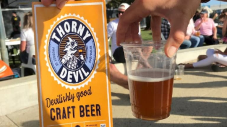 Thorny Devil do a great pale ale and their new cider will be on show at City Wine.