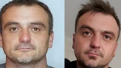 Car found in state forest during hunt for missing father Dale Pantic