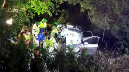 Trapped woman rescued 17 hours after car crash off Princes Highway
