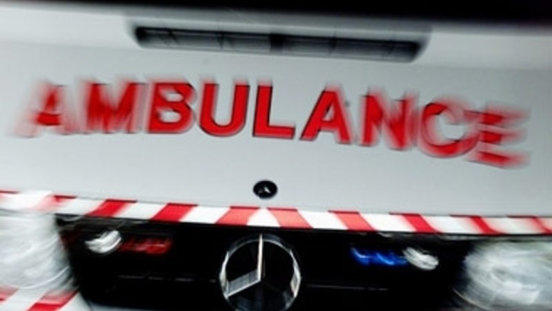 Boy taken to hospital after being bitten by dog at Cairnlea