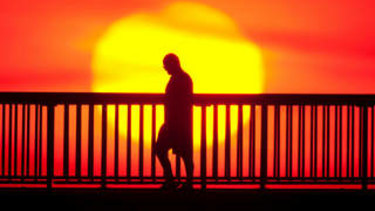Scientists have linked heatwaves and bushfires to climate change.