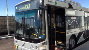 Blue and Green CAT buses have not been in service during the industrial action.