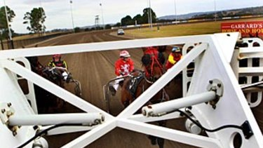 Stakes up: Grassroots prizemoney will have the horses ready to fly.