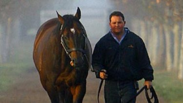 He will live on: Stallion groom Adam Shankley walks Redoute's Choice at Arrowfield