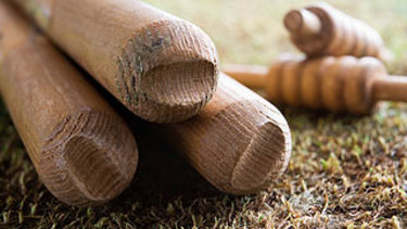 cricket stumps wickets