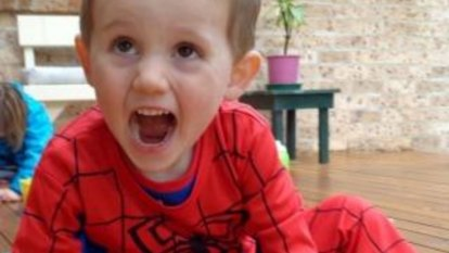 William Tyrrell's foster mother feared her daughter would be abduction target