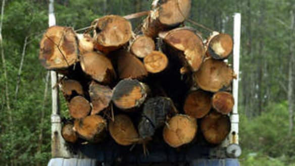 Bush turns its back on support for logging native forests