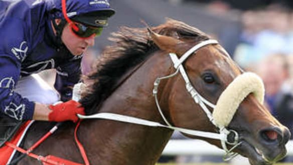Generation Next get chance to stamp greatness in stallion-making race