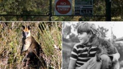 Paradise Lost: Sydney's forgotten theme parks